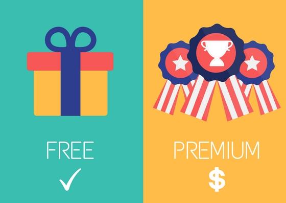 freemium or premium for SaaS