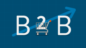ecommerce - b2b