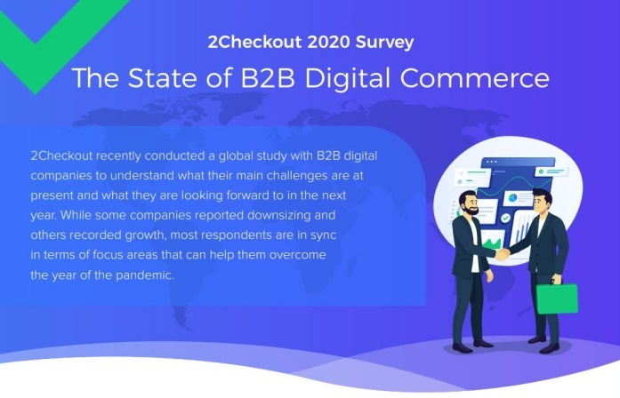 b2b survey infographic